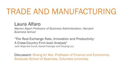 The Real Exchange Rate Innovation And Productivity A Cross Country Firm Level Ysis Laura Alfaro