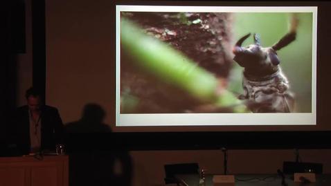 Thumbnail for entry Brazil LAB Conference - Keynote - Eduardo Kohn & Joao Biehl