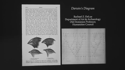 "Thumbnail for entry Old Dominion Lecture with Rachael DeLue: ""Darwin's Drawings"""