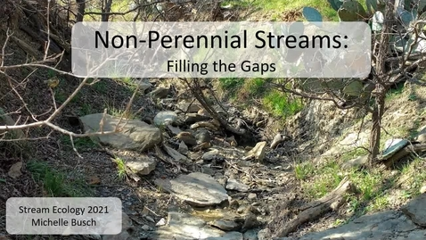 Thumbnail for entry Intermittent Streams