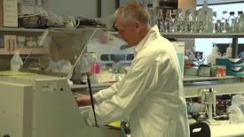 Thumbnail for entry Mikroorganismer som lever under extrema förhållanden