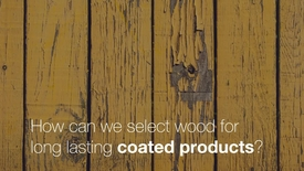 Miniatyrbild för inlägg How can we select wood for long lasting coated products?