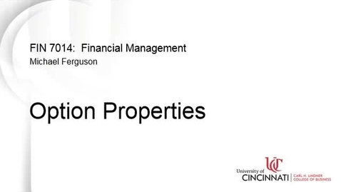 Thumbnail for entry Option Properties