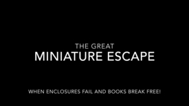 Thumbnail for entry The Great Miniature Escape