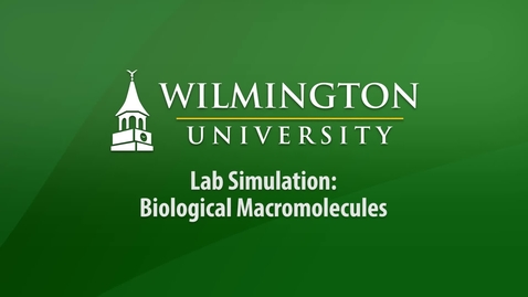 Thumbnail for entry Lab Simulation - Biological Macromolecules