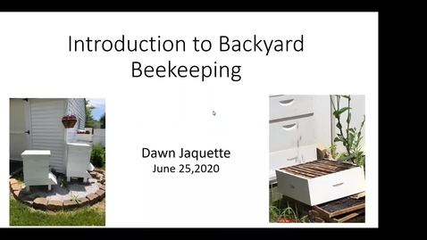 Thumbnail for entry Beekeeping Basics - Dawn Jaquette