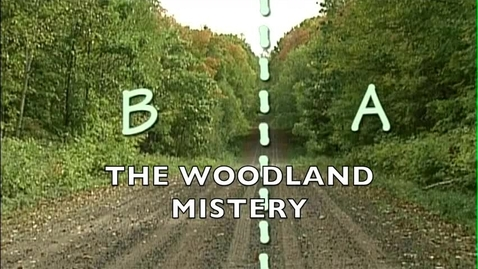 Thumbnail for entry The Woodland Mistery