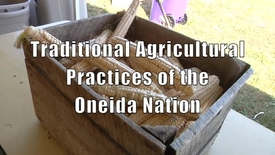 Thumbnail for entry Traditional Agricultural Practices of the Oneida Nation