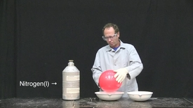 Thumbnail for entry balloon in liquid nitrogen2