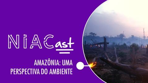 Miniatura para entrada #02 | Amazônia: Uma Perspectiva do Ambiente