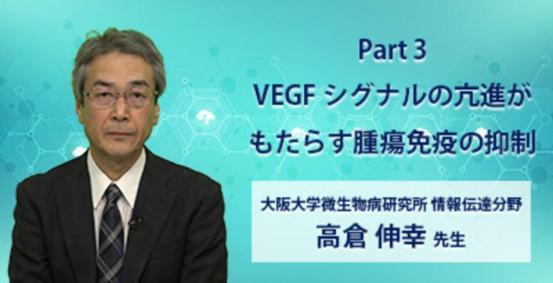 Part 3 VEGF シグナルの亢進がもたらす腫瘍免疫の抑制
