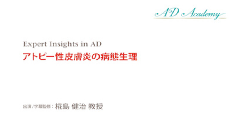 【Expert insights in AD 19】アトピー性皮膚炎の病態生理