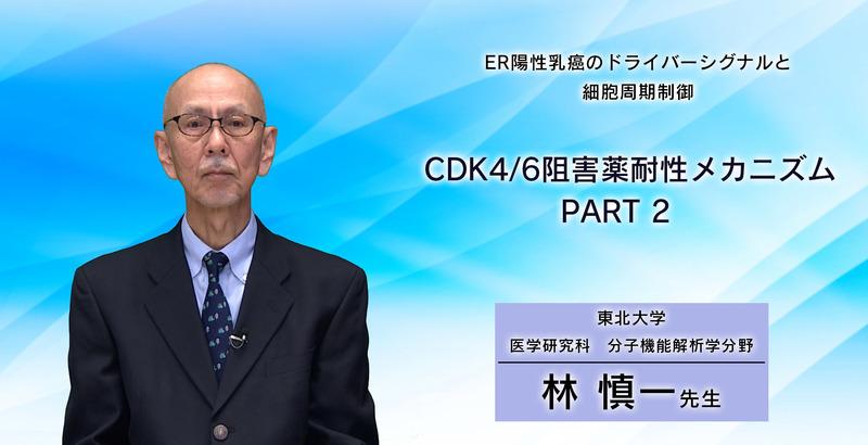 ER陽性乳癌のドライバーシグナルと細胞周期制御 CDK4/6阻害薬耐性メカニズム PART 2