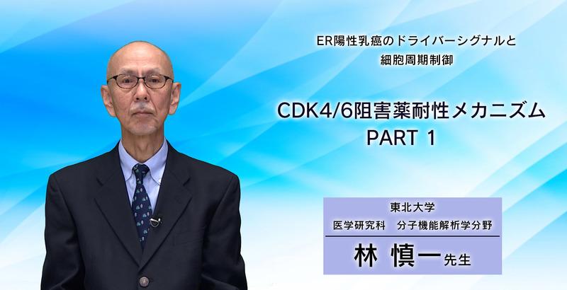 ER陽性乳癌のドライバーシグナルと細胞周期制御 CDK4/6阻害薬耐性メカニズム PART 1