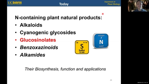 Thumbnail for entry PBI298 Lecture#4-3 Glucosinolates