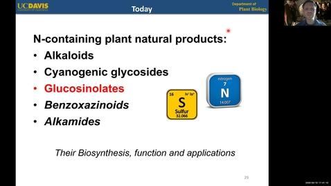 Thumbnail for entry PBI298 Lecture#4-3 Glucosinolates