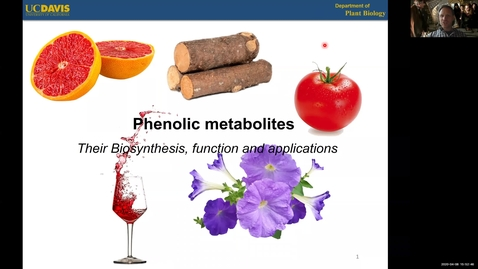 Thumbnail for entry PLB298 Lecture#3 PHENOLICS
