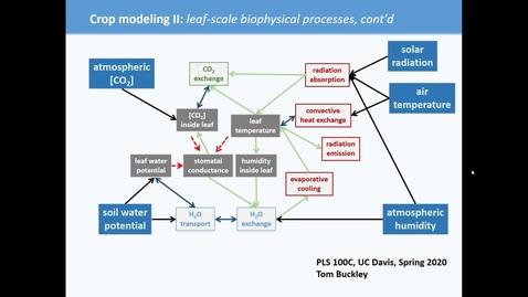 Thumbnail for entry PLS100C (crop modeling II)