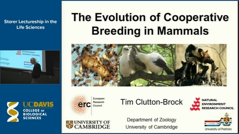 Thumbnail for entry Storer Lecture - Tim Clutton-Brock  4-16-15