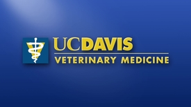 Thumbnail for entry 2017 Vet Med Commencement