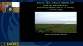 Thumbnail for entry BML - Jessie Lacy: Linking sediment flux to marshes with dynamics in Bay shallows