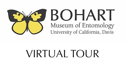 Thumbnail for entry Bohart Virtual Tour Sneak Peek