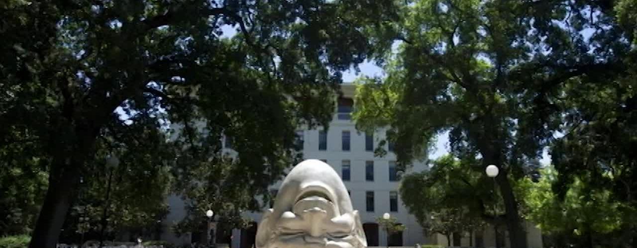 475 DFA History of the Davis Faculty Association