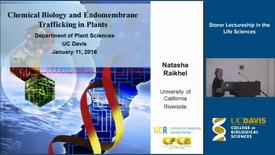 Thumbnail for entry Storer Lecture - Natasha Raikhel 1-11-16