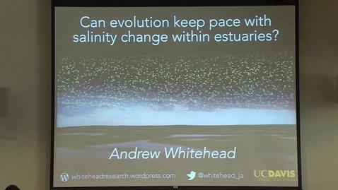 Thumbnail for entry CMSI - September 26, 2018 - Andrew Whitehead