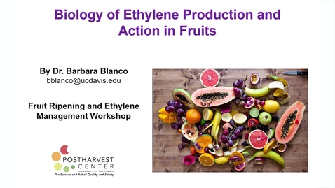 Thumbnail for entry Biology of Ethylene Production and Action in Fruits - (Blanco)