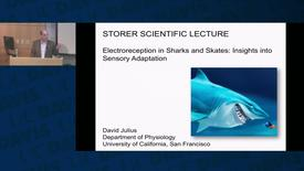 Thumbnail for entry Storer Lecture - David Julius - 10-11-2018
