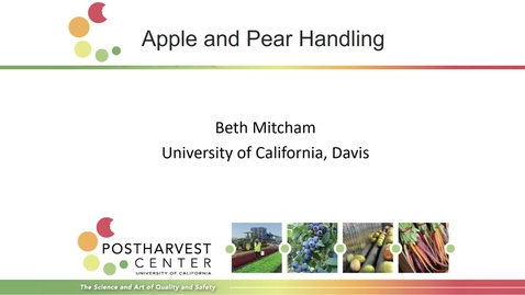 Thumbnail for entry Apples and Pears (Mitcham)