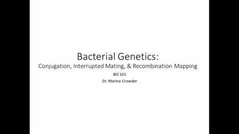 Thumbnail for entry Bacterial Conjugation Analysis