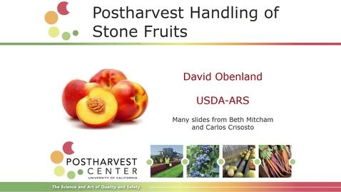 Thumbnail for entry Stone Fruit (Obenland)