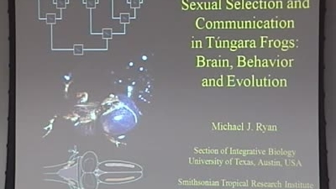 Thumbnail for entry Storer Lecture - Michael J. Ryan 01-14-2010
