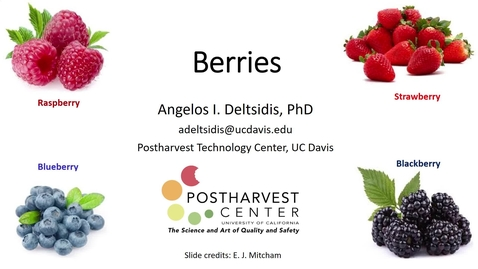 Thumbnail for entry Berries (Deltsidis)