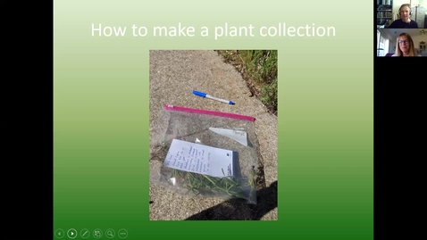 Thumbnail for entry Supplement03: Making Herbarium Specimens (Guest Presentation by Julie Kierstead)