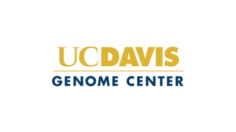 Thumbnail for entry Genome Center Ident