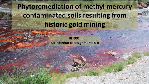 Thumbnail for entry Bioinformatics 5 and 6:  Bioremediation of historic gold sites
