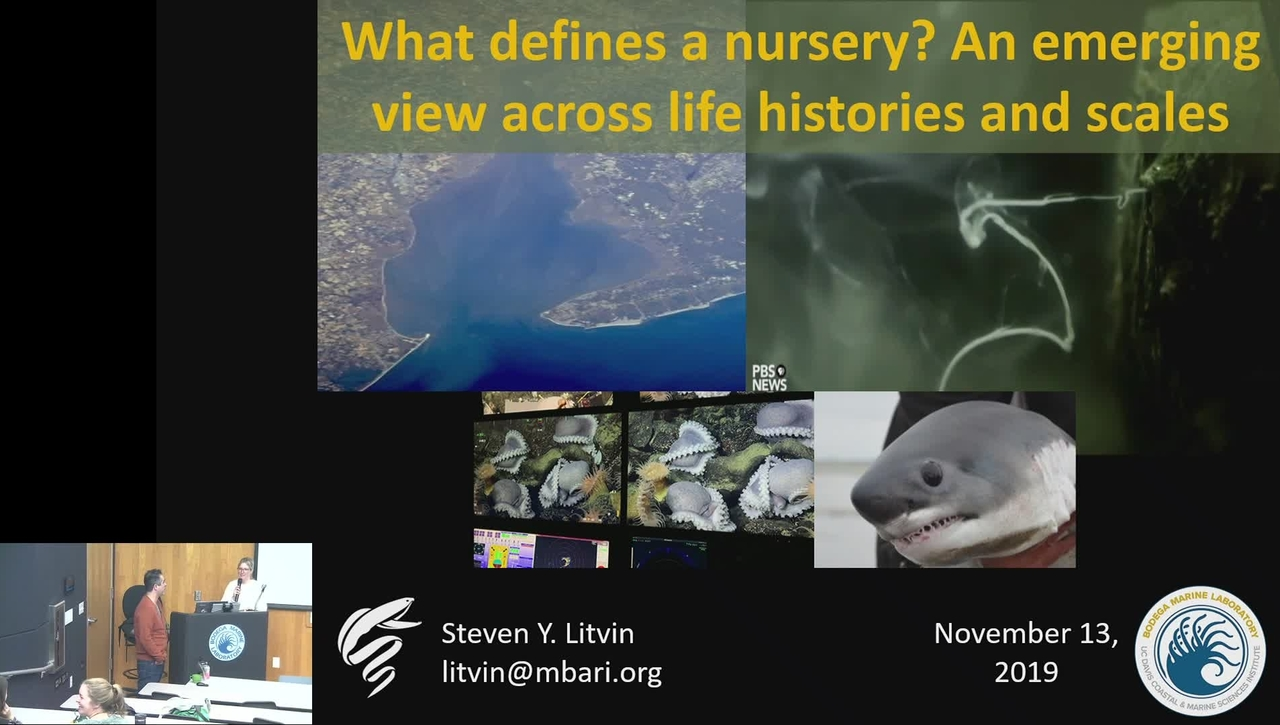 BML - Steven Y. Litvin: What defines a nursery? An emerging view across life histories and scales