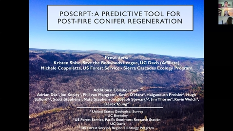 Thumbnail for entry CFSC-UCD Webinar: Conifer regeneration after severe wildfire