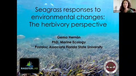 Thumbnail for entry BML - Dr. Gema Hernán: Seagrass responses to environmental changes: the herbivory perspective