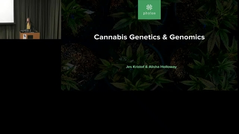 Thumbnail for entry Cannabis genetics