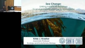 Thumbnail for entry BML - Kristy Kroeker: Sea Change