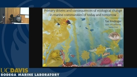 Thumbnail for entry BML - Tye Kindinger: Primary drivers and consequences of ecological change in marine communities of today and tomorrow