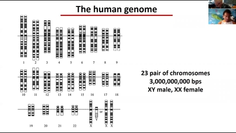 Thumbnail for entry Human genome lecture