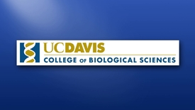 Thumbnail for entry 2018 Biological Sciences Commencement – June 17, 2018