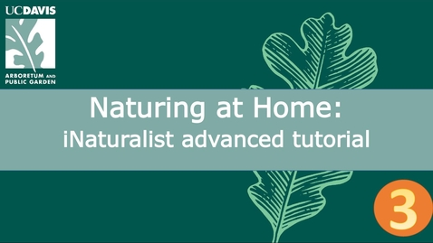 Thumbnail for entry Naturing at Home: iNaturalist advanced tutorial  | Part 3 of 3