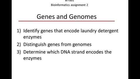 Thumbnail for entry Bioinformatics assignment 2: Genes and genomes