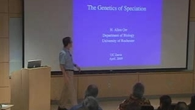 Thumbnail for entry Storer Lecture - Allen Orr 04-21-2009